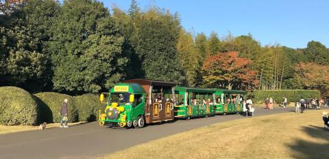 昭和記念公園_トレイン
