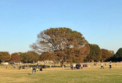 みんなの原っぱ_昭和記念公園