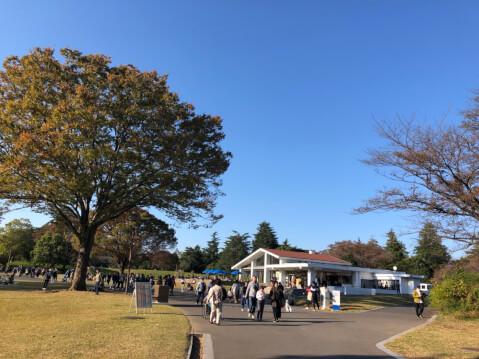 昭和記念公園_紅葉