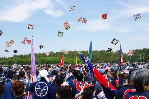 静岡観光凧揚げ合戦