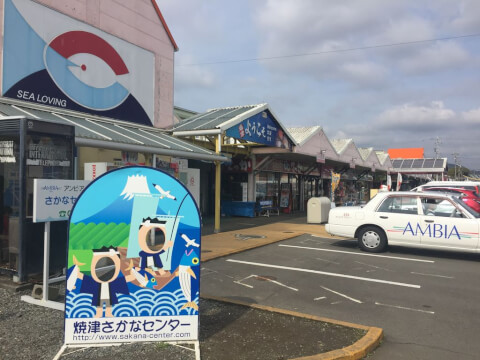 静岡観光焼津さかなセンター