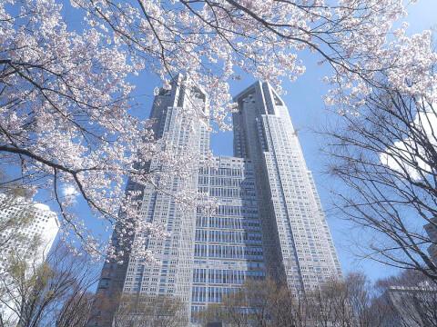 新宿 デート 東京 都庁 観光