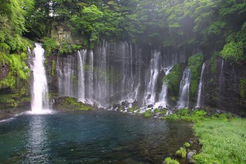 滝白糸の滝