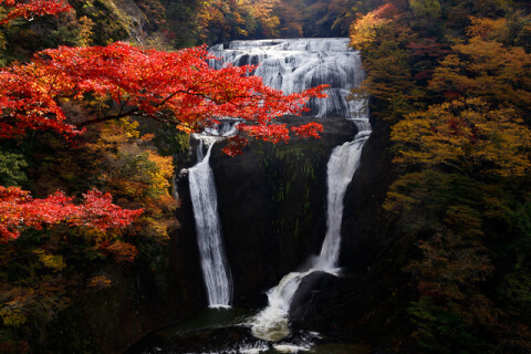 滝袋田の滝紅葉