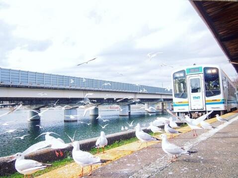 天竜浜名湖線