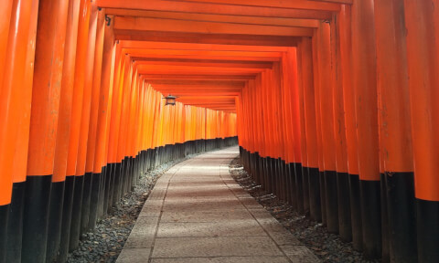 京都:伏見稲荷大社の千本鳥居