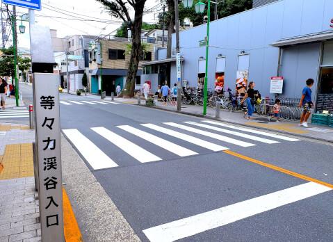 seijoishii