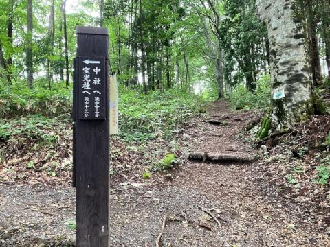 戸隠神社 山道