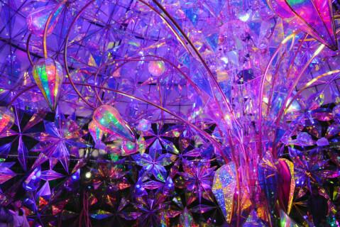 紫色のライトに照らされたドーム