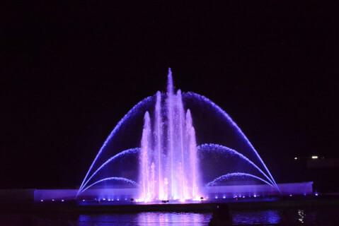 ヴェルサイユの光・紫色