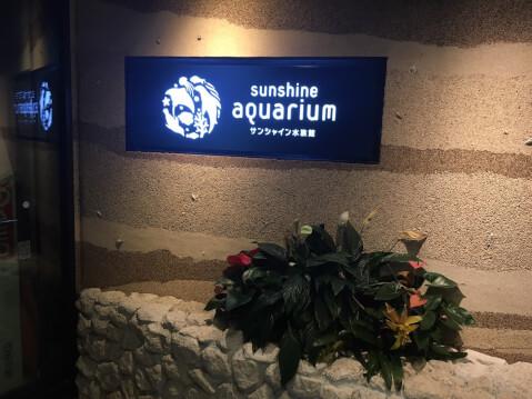 Sunshine_auarium