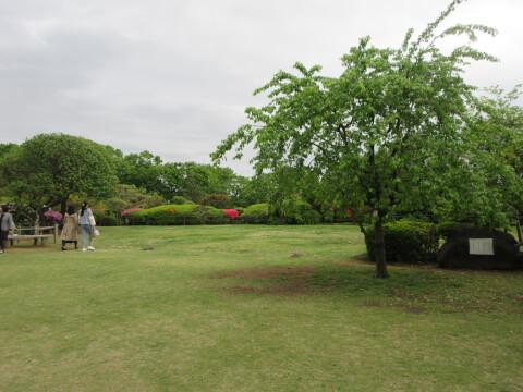等々力渓谷 庭園