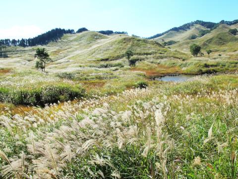 ハイキング 砥峰高原