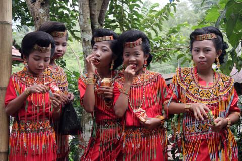 タナ・トラジャ インドネシア