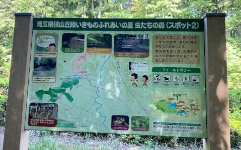 トトロの森_観光