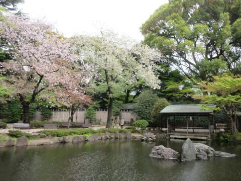 靖国神社 神池