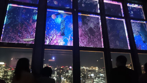 プロジェクション 東京タワー