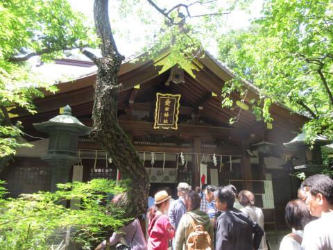 本殿 愛宕神社