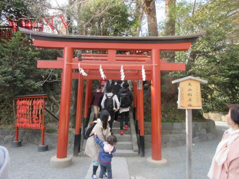 丸山稲荷神社 鶴岡八幡宮