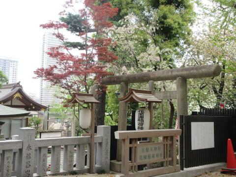 花園稲荷神社 自然