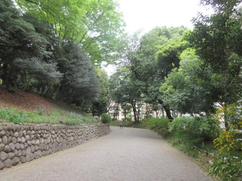 旧岩崎邸庭園 道