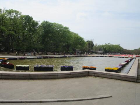 上野恩賜公園 広場
