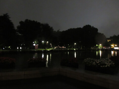 上野公園 夜景