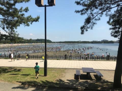 海の公園2