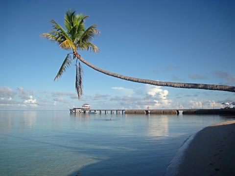 スラウェシ島 セレベス島 インドネシア