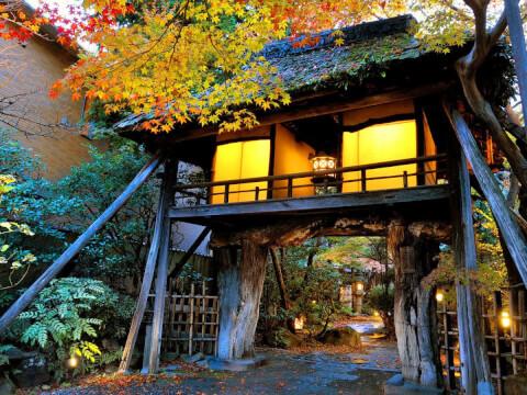 京都 旅館 宿泊 山ばな 平山茶屋