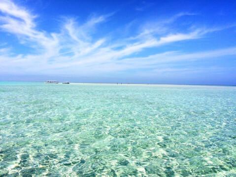 百合が浜1