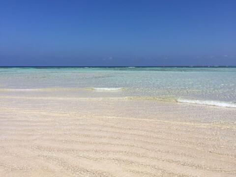百合が浜2