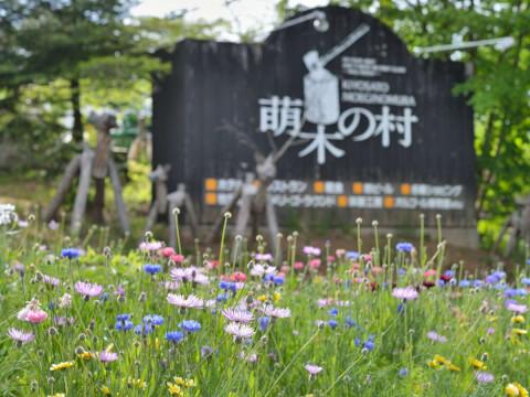 八ケ岳 萌木の村