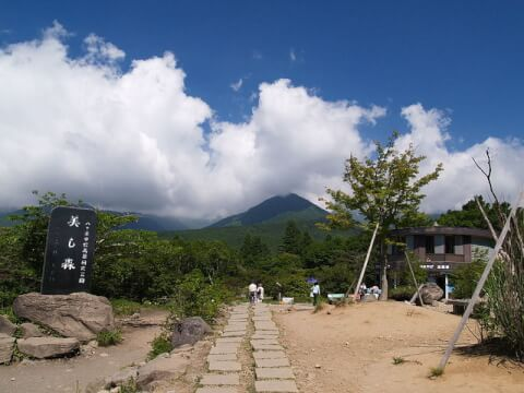 八ケ岳 美し森