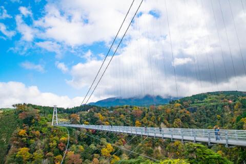 夢吊り橋1