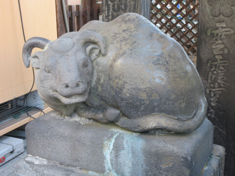湯島天神の牛