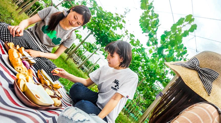 【お洒落ガーデンランチ!】新宿から25分の農園で新鮮なじゃがいもを収穫・調理し、ぶどうの樹の下で食べる旅!@東京都調布市