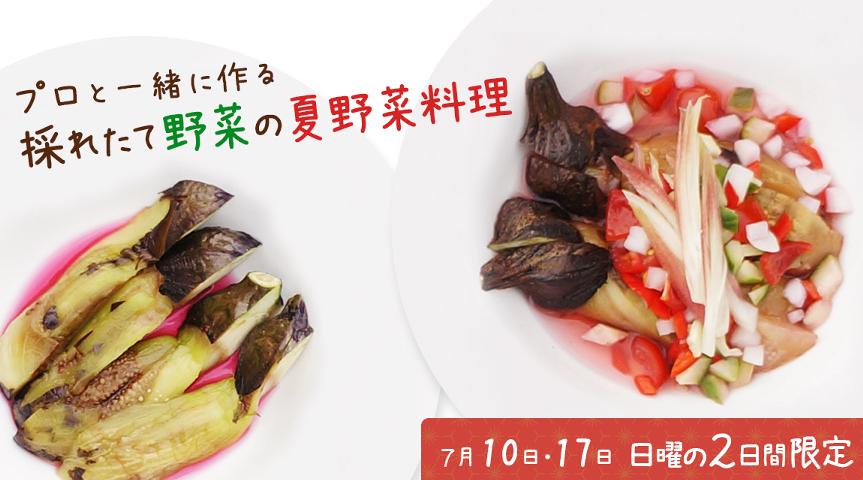【7月10日・17日限定! シェフと作る夏野菜料理】夏野菜を収穫し プロの料理人と夏野菜料理、特性ドレッシングを一緒に作る旅