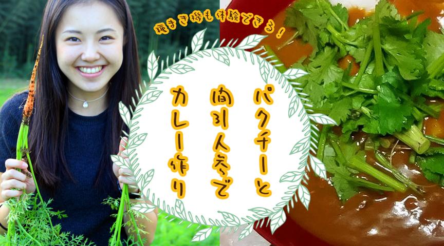 【千葉八街で自然体験】葉物野菜の収穫体験と種まき!みんなで作ったカレーはパクチーを添えて!秘伝のつるむらさきのおひたしも