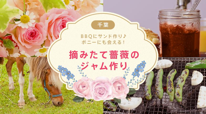 【館山でバラの花摘&バラジャム作り】バラの花を自分で摘んでジャムを作る!手作りジャムは本当においしい‼