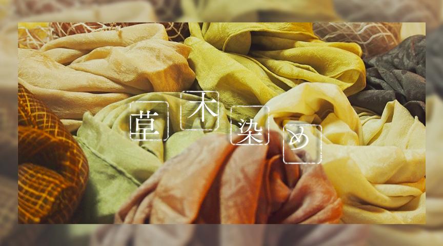 【滋賀県草津市】日本の色合い!季節を感じる草木染め体験!