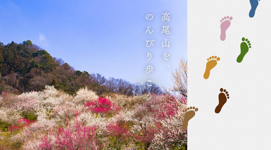 【高尾山】世界の山を知る登山家と高尾山をのんびり歩こう。人から人へ伝わる自然の魅力<街歩き>