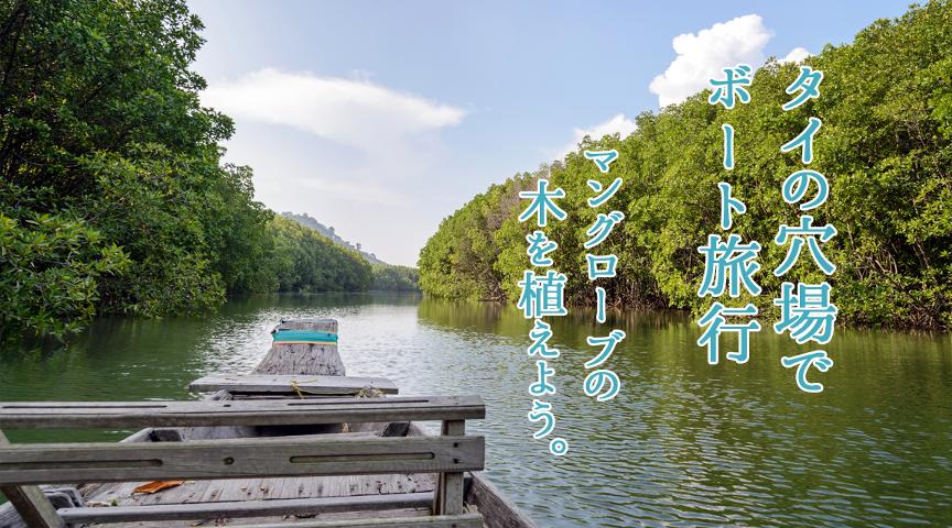 【海外体験】マングローブの木を植えよう!タイの穴場で気持ちの良いボート旅行