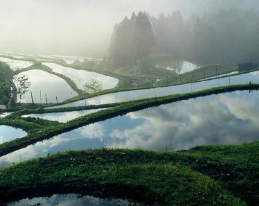 滋賀の日本酒【萩乃露(はぎのつゆ)】日本の原風景、里山の恵みを活かした酒造り