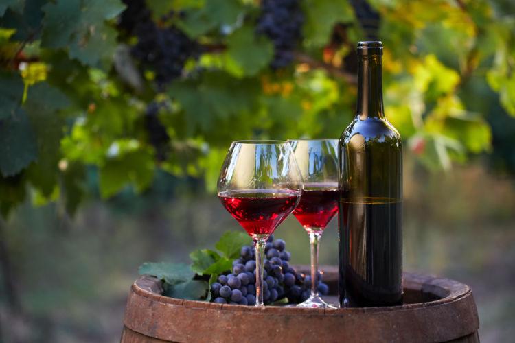 フルボディのワインの魅力を味わい尽くす!