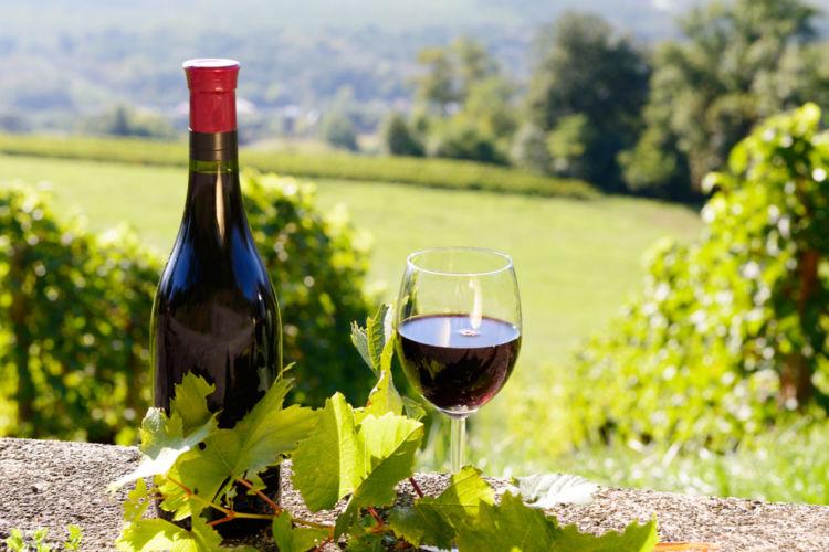 「五一わいん」は信州の老舗ワイナリー・林農園のワイン