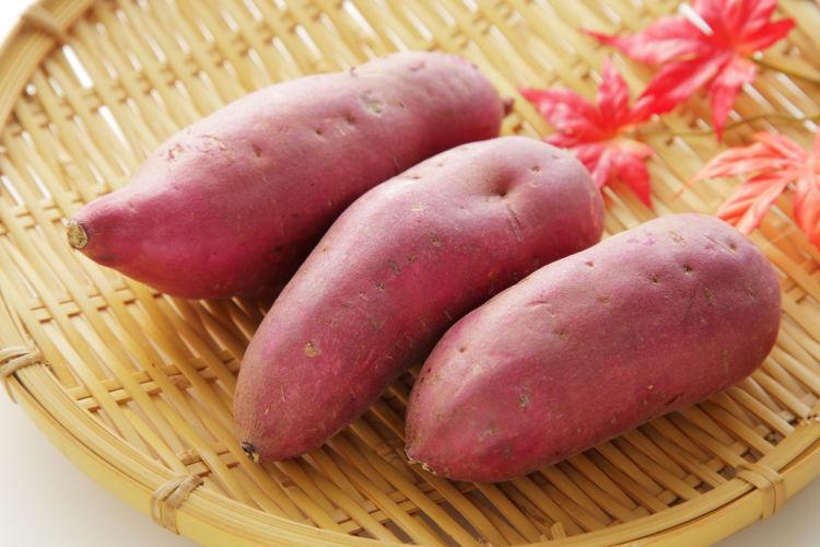 芋焼酎が鹿児島に多いのはなぜ? 鹿児島の芋焼酎の魅力を徹底分析