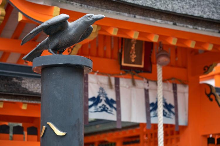 奈良の日本酒【やたがらす】神の使いを名に冠した吉野の地酒