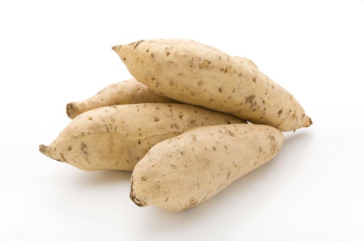 「ジョイホワイト」が芋焼酎の原料に適する理由とは? 【焼酎用語集】