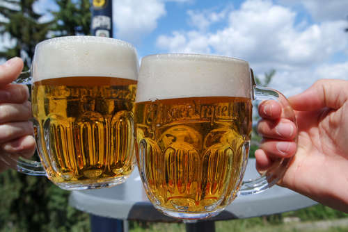 ビール王国ドイツのピルスナーと元祖ピルスナーチェコのビールを飲み比べ!